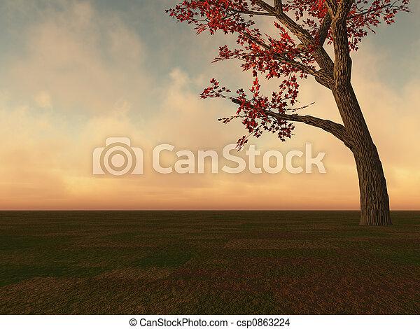 Fall Maple Tree on Horizon - csp0863224