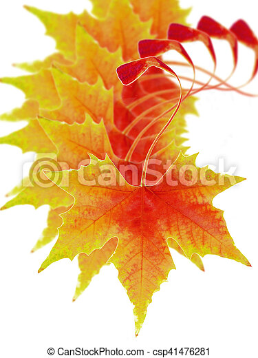 fall of autumn leaves - csp41476281