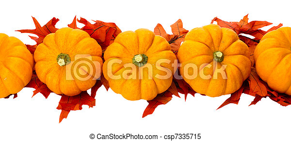 Fall or Thanksgiving or Halloween decoration isolated on white - csp7335715