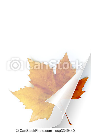 Fall Page - csp3349440