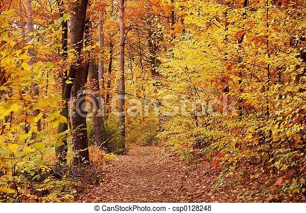 Fall - csp0128248