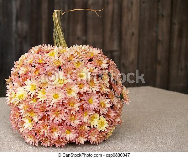 fall pumpkin with mums - csp0830047
