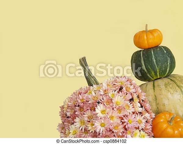 fall pumpkins and mums - csp0884102
