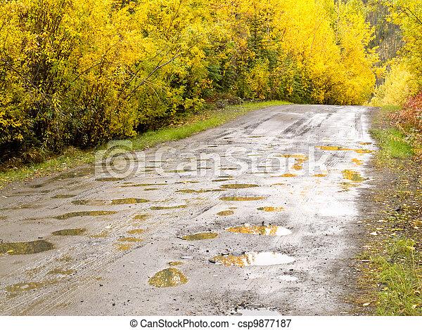 Fall rain on rural dirt road thru yellow willows - csp9877187