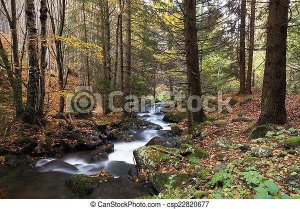 Fall River - csp22820677