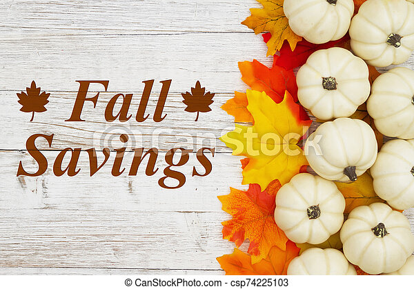 Fall Savings message with white pumpkins with fall leaves - csp74225103