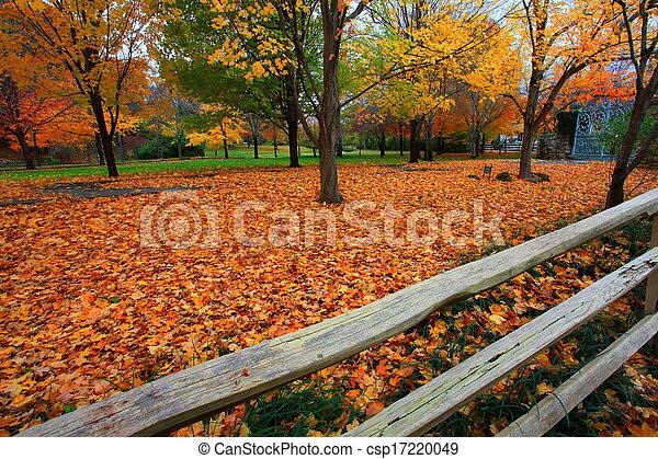 fall scene - csp17220049