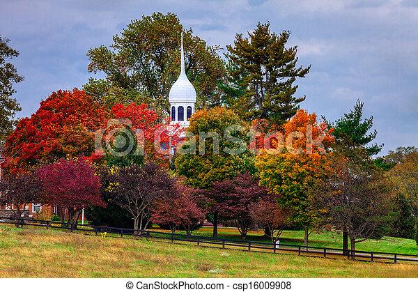 Fall scene - csp16009908
