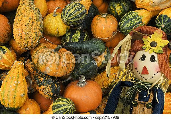 Fall scene - csp22157909
