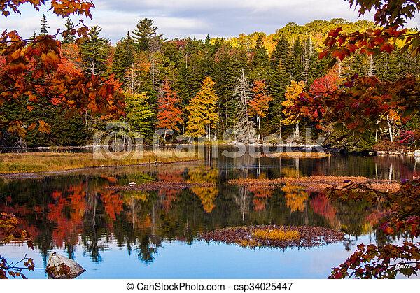 fall scenery fall colours near chester nova scotia