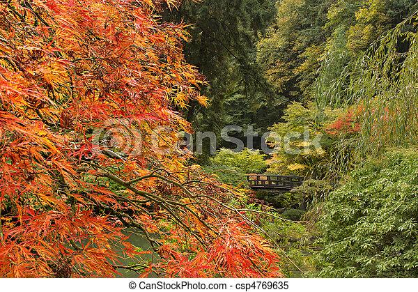 Fall Season at Japanese Garden - csp4769635