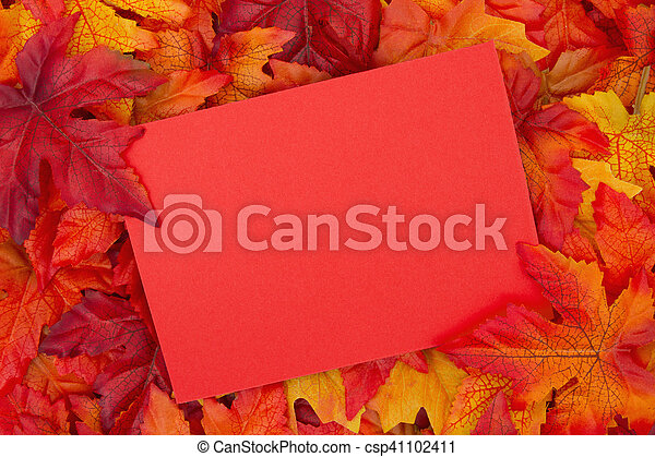 Fall Season Greeting , Some fall leaves with a blank red greeting card with copy-space for your message