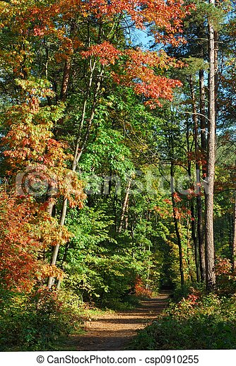 Fall - csp0910255