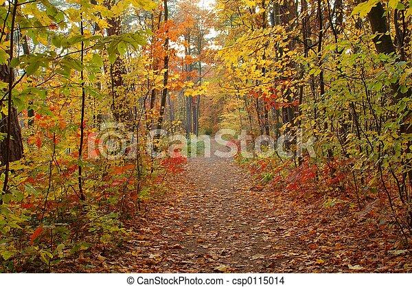 Fall - csp0115014