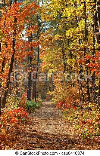 Fall - csp0410374