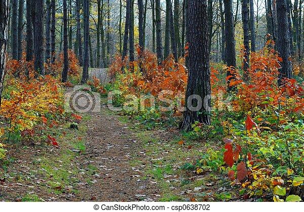 Fall - csp0638702