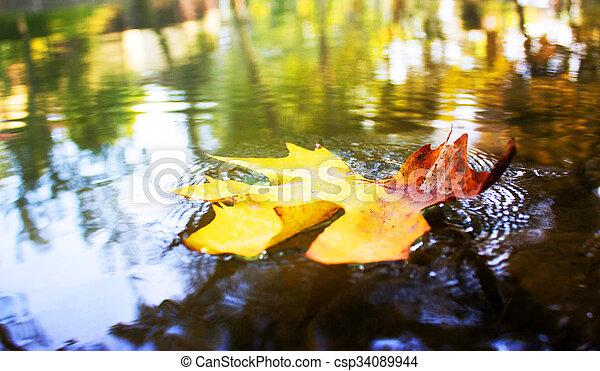 Fall - csp34089944