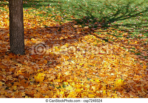 fall - csp7249324