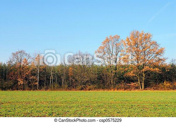 Fall - csp0575229