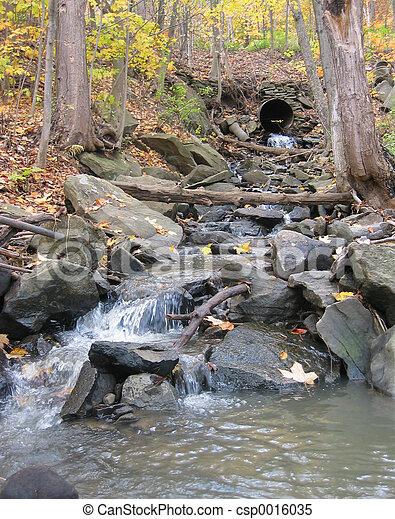 fall stream - csp0016035