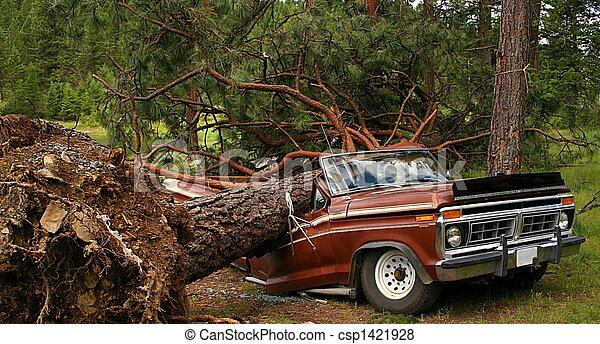 fallen träd, lastbil - csp1421928