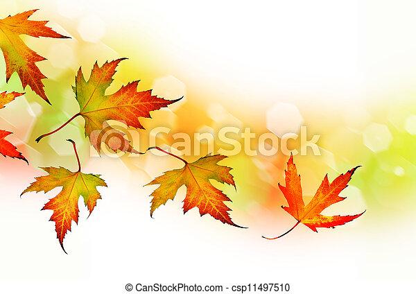 Falling Autumn Leaves - csp11497510