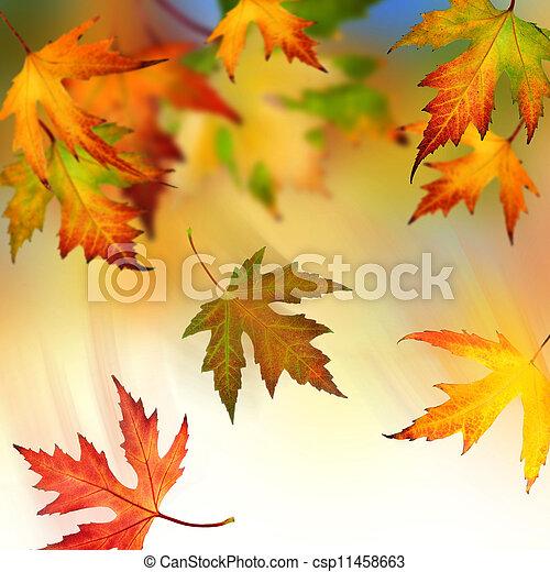 Falling Autumn Leaves - csp11458663