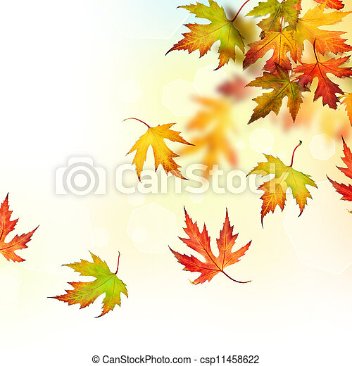 Falling Autumn Leaves - csp11458622