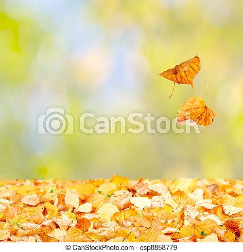 Falling Autumn Leaves - csp8858779
