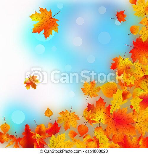 Falling fall leaves. - csp4800020