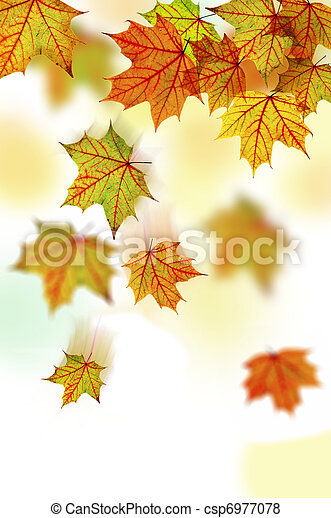 Falling Leaves - csp6977078