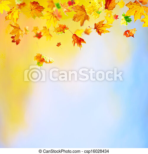 Falling Leaves - csp16028434