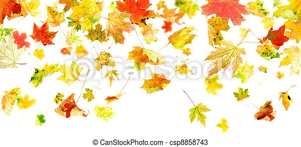 Falling Leaves - csp8858743