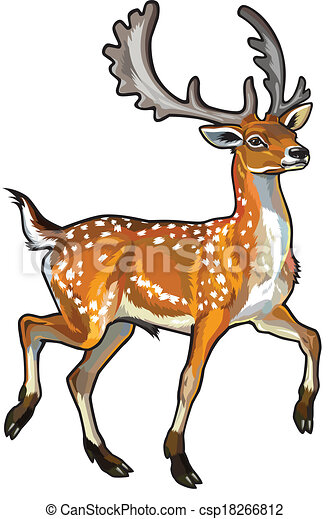 fallow deer side view illustration isolated on white background rh canstockphoto com deer hunting clipart images deer clipart images for curving
