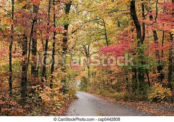 Fall's beauty - csp0442808