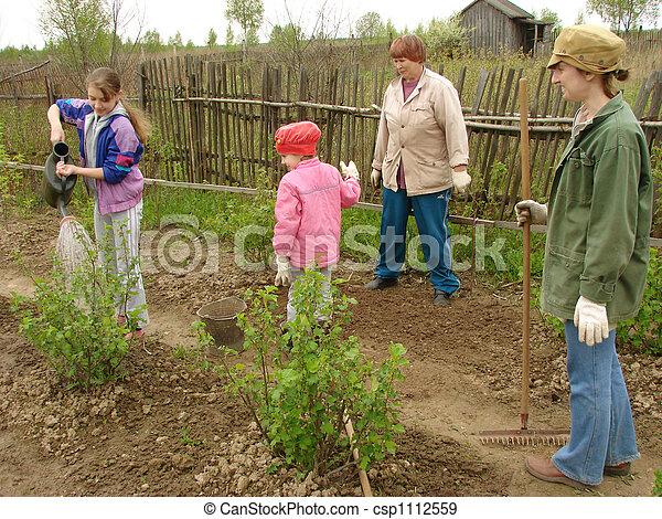 La jardinería familiar - csp1112559