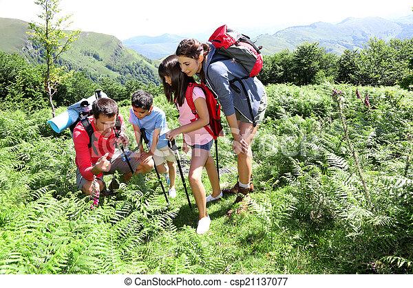 Familie an einem Trekkingtag mit Blick auf wilde Blumen - csp21137077