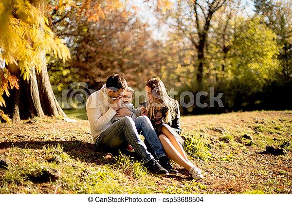 famille, séance, parc, jeune, automne, terrestre - csp53688504
