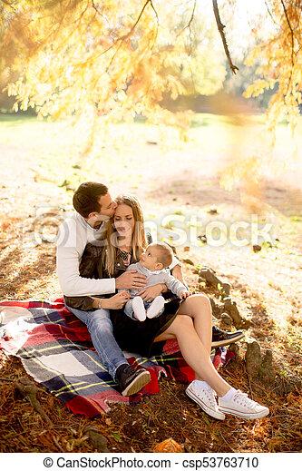 famille, séance, parc, jeune, automne, terrestre - csp53763710