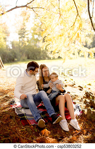 famille, séance, parc, jeune, automne, terrestre - csp53803252