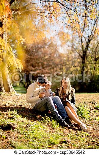 famille, séance, parc, jeune, automne, terrestre - csp53645542