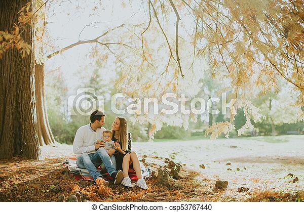 famille, séance, parc, jeune, automne, terrestre - csp53767440