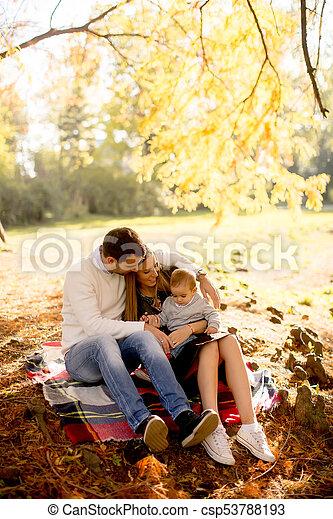 famille, séance, parc, jeune, automne, terrestre - csp53788193