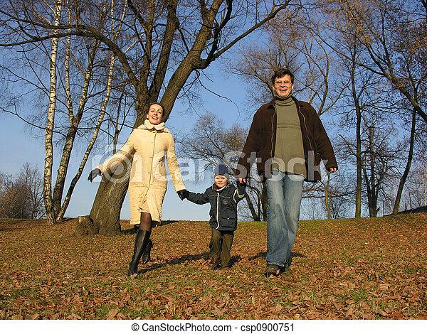 family., 歩くこと, wood. - csp0900751