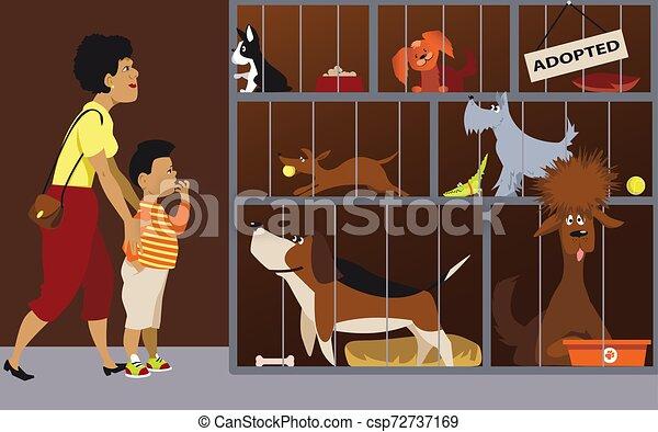 Family adopting a dog - csp72737169
