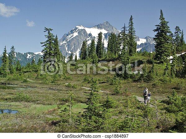 Family hike in Washington - csp1884897