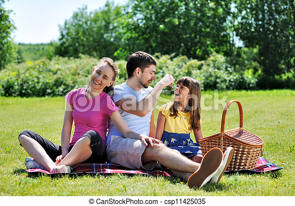 Family on picnic - csp11425035