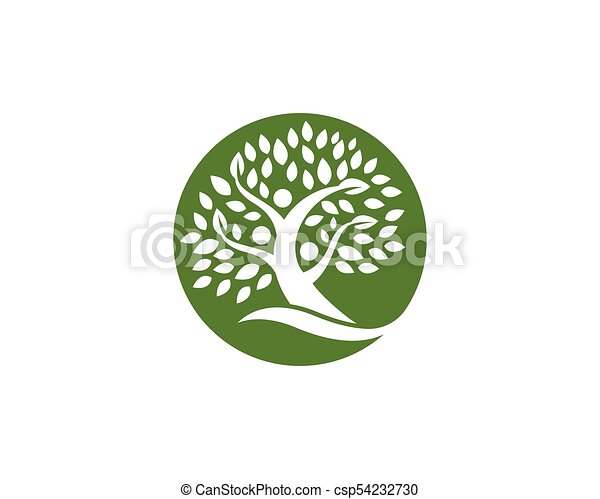 Family Tree Logo Design Template Family Tree Symbol Icon Vectors