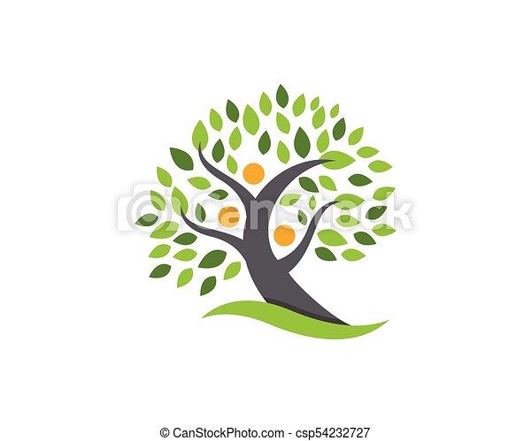 Family Tree Logo Design Template Family Tree Symbol Icon Logo