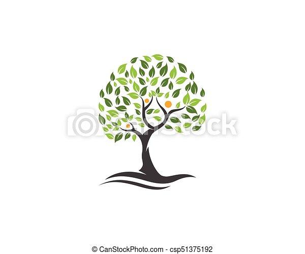 Family Tree Logo Template Family Tree Symbol Icon Logo Eps